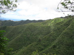 Kuli'ou'ou Trail on Oahu