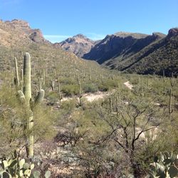 Sabino Canyon, Bear Canyon Trail